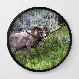 Big Horn Ram Wall Clock