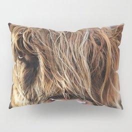 Highland Cow Print II Pillow Sham