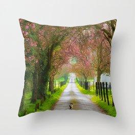 thou shall not pass Throw Pillow