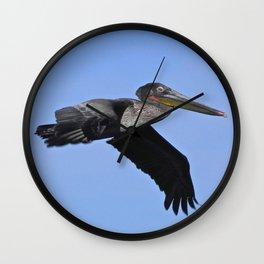 pelican flyby Wall Clock