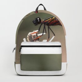 Dancing Damsel Backpack