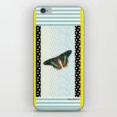 Mint butterfly iPhone & iPod Skin