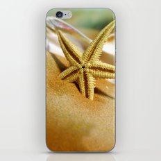 Sea shells II iPhone & iPod Skin