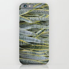 Snake Plants Slim Case iPhone 6s
