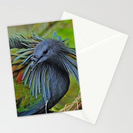 Nicobar Pigeon Stationery Cards