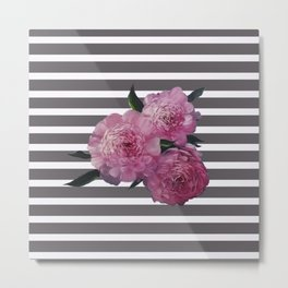 Painted Pink Peonies on Striped Background Metal Print