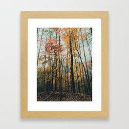 Mississippi Fall Framed Art Print