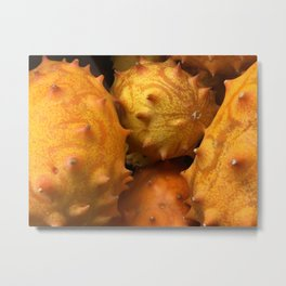 African Horned Melons Metal Print
