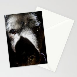 Serious in the sunshine Stationery Cards