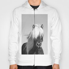 Portrait of a Horse in Scotish Highlands Hoody