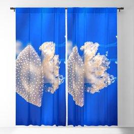 Jellyfish Aquarium Of Genoa Ponte Spinola Genova Italy Europe Ultra HD Blackout Curtain