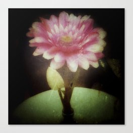 Vintage Dreamy Flower Canvas Print