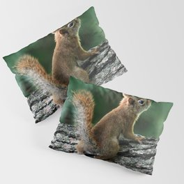 Young Red: Juvenile Red Squirrel Pillow Sham