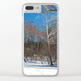 Classic Romance Clear iPhone Case