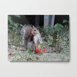 Aww...thanks! Metal Print