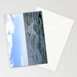 Spinner Dolphin  Stationery Cards