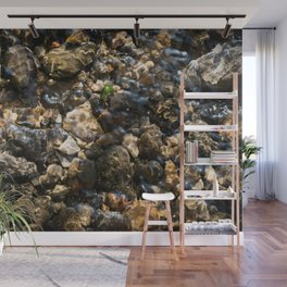 Doulting Pebbles Wall Mural