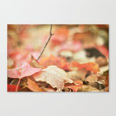 Forest Floor in Autumn Canvas Print
