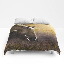 Teeka in Sunrise Comforters