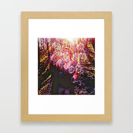Sunshine Forest Bubble Happiness Framed Art Print