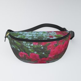 South Battery Spring Fanny Pack