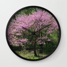 Redbud in Bloom Wall Clock