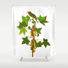 Traill's Flycatcher Bird Shower Curtain