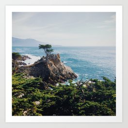 The Lone Cypress Art Print