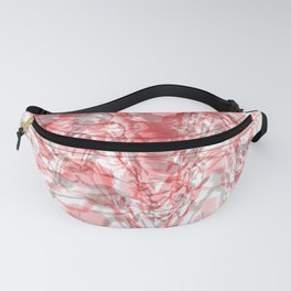 Abstract 171 Fanny Pack