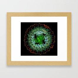 Spiders Framed Art Print
