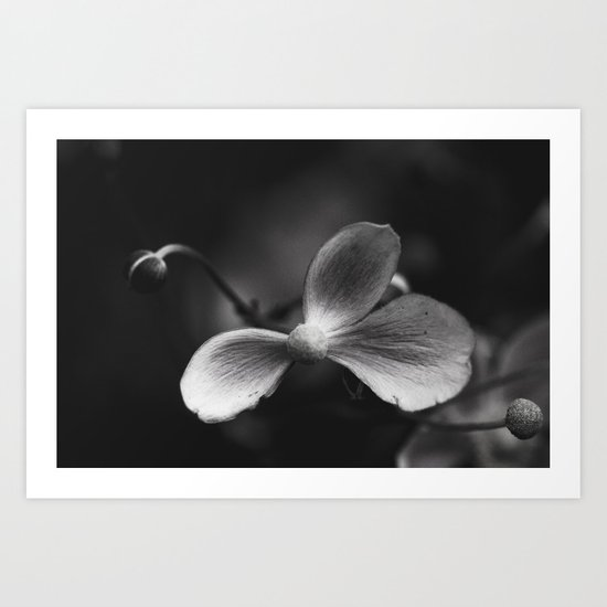 Shades of grey Art Print
