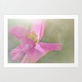 Fuchsia Pink Flower Art Print