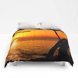 Sunrise The Maldives Comforters