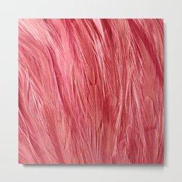 Pink Feather Texture Metal Print