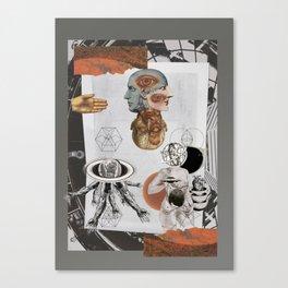 plastic dreams / sueños plásticos  Canvas Print