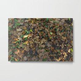 Warm Autumn Metal Print