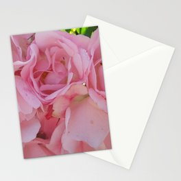 Pink Rose 6 Stationery Cards
