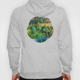 Growth Potential Hoody