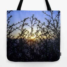 Pacific Coast Sunset Through the Trees at Torrey Pines State Beach, California - Color Photo Tote Bag
