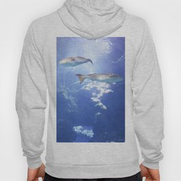 View From the Bottom Hoody