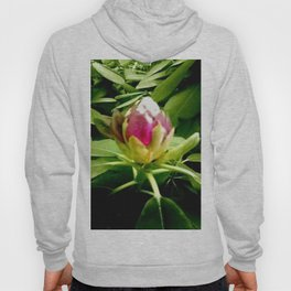 Rhododendron. Hoody