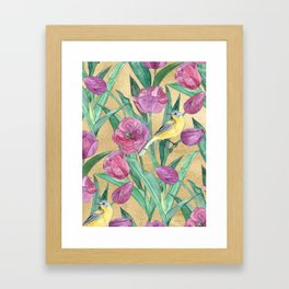 Blue Headed Wagtail in the Tulips Framed Art Print