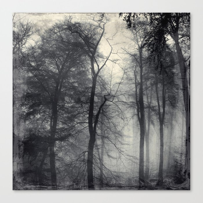 realm of shades - misty forest Canvas Print