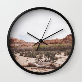 Spring in the Desert Wall Clock