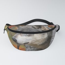 Grey Wolf Canis Lupus Pokes Head Fanny Pack