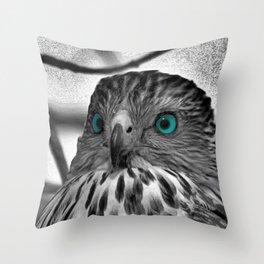 Black and White Hawk with Aqua Blue Eye A165 Throw Pillow