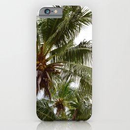 Costa Palms iPhone Case