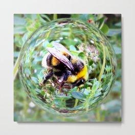 Bubblebee Bumblebee Metal Print