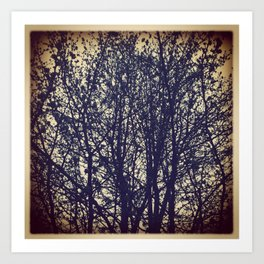 Fall devoided of leaves Art Print