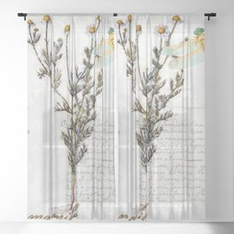 Chamomile Herb, Dragonfly Bumble Bee Botanical painting, Cottage style Sheer Curtain